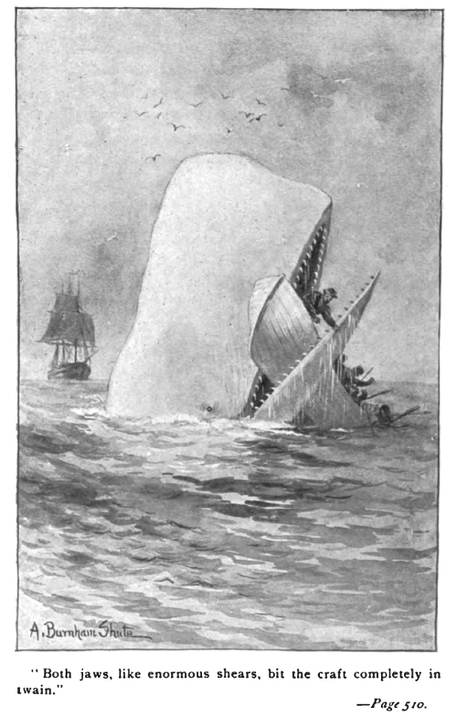 Moby Dick attacking a skiff